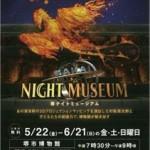 sakai-night2